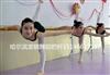 哈尔滨舞蹈学校专业舞蹈把杆供应商