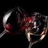 葡萄酒品鉴指南