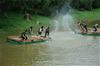 夏季来临东莞哪里有好玩的农家乐项目推荐