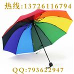 【雨傘廠】全市高中錄取率預計近...