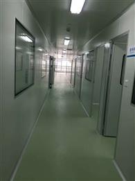 广州大学城生物岛施工过程及完工效果