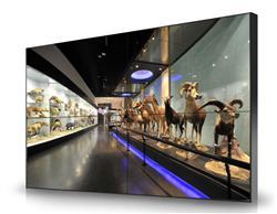博物馆互动交融系统