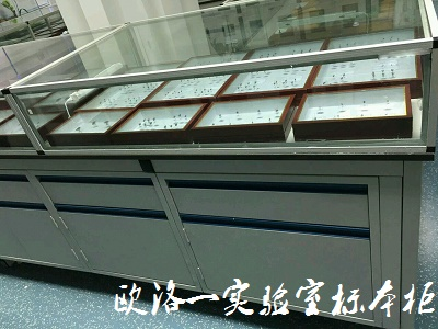 实验室标本柜