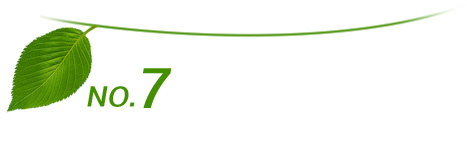 本企业并通过的ISO9001国际质量体制认证(注册号:0147Q10153ROS)