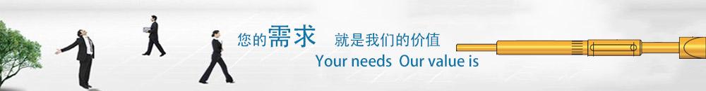 中华探针(广州)有限公司