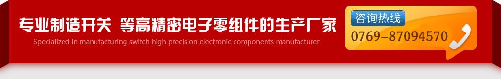 专业制造开关,等高精密电子零组件生产厂家