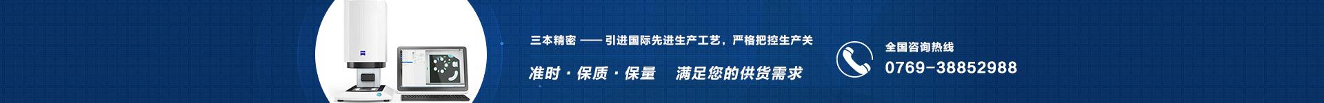 龍洲利-引領國際先進生產工藝