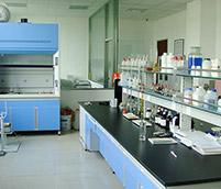 不新颖的实验室
