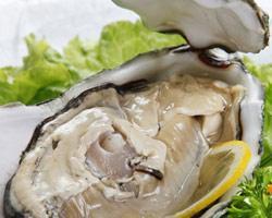 活海膏蟹的挑选及食用季节
