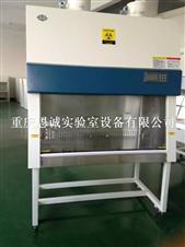 重庆生物安全柜,贵州生物洁净柜
