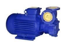 单级单吸旋涡泵