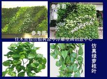 仿真植物墙佳木斯雕塑15246463685