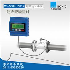 WSD-2000M模块管道式超声波流量计/能量表