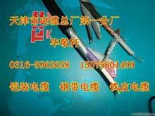 全系列铠装PROFIBUS-DP电缆,钢带铠装,钢丝铠装