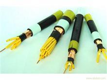 KVVP22电缆,KVVP22铠装屏蔽控制电缆