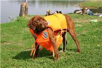 DOG207 dog life vest