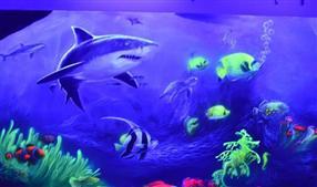 海底世界荧光彩绘