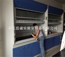 供应实验室设备 重庆通风柜 通风橱