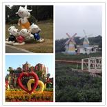 百花齐放奇观深圳农家乐松湖生态园