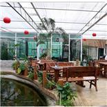 生态音乐餐厅-松湖生态园