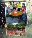 深圳特蕾新幼儿园亲子游活动在松山湖农家乐亲子趣味一日游