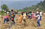 深圳鹏城美丽乡村相比深圳其他农庄亲子活动有巨大优势