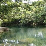 楊梅坑一日游攻略A2線地質博物館+野炊+溯溪