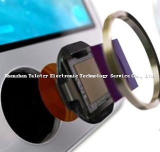fingerprint identification device