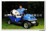 clubcar  i2高爾夫球車