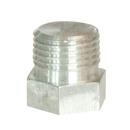 Hexagon Head Plug