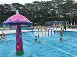 松山湖梦幻百花洲水上乐园游泳池体怎么收费
