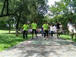 深圳君王棋牌松湖生态园一日游行程方案