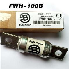 FWH-100B      500V.