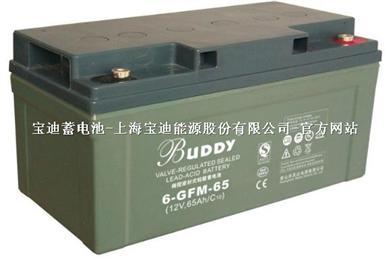 宝迪12V65AH电池