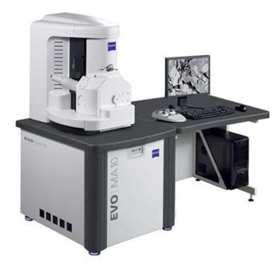蔡司扫描电子显微镜 EVO MA 10/LS 10