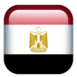 埃及CoC