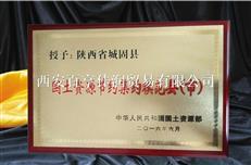 西安腐蚀奖牌 西安堆金奖牌 高档奖牌定做
