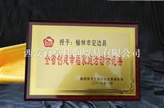陕西政府奖牌定做 西安企业奖牌
