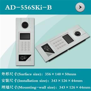 AD-556SKI-B