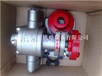 ZYB-18.3不锈钢渣油齿轮泵