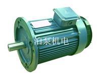 上海黎达三项异步电机