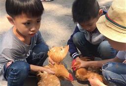深圳农家乐野炊深圳可以自己做饭的农家乐光明乐湖生态农场