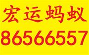 深圳南山桂廟路口搬家公司86566557