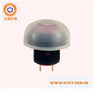 宏源开关直销PB12-2-R防水TP67带灯按钮开关带通明防水帽灯色多选