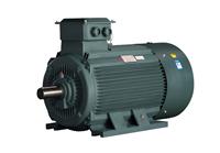 东莞电机 YE2系列高效率三相异步电动机