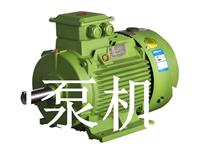 YE3系列超高效率三相异步电动机 东莞电机