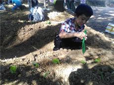 虎门大宁小学3年级来松山湖农家乐亲子拓展